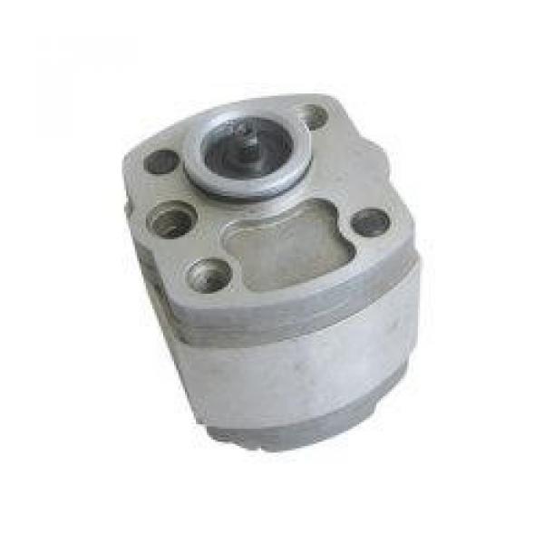 QT63-80-A Bomba de engrenagem hidráulica